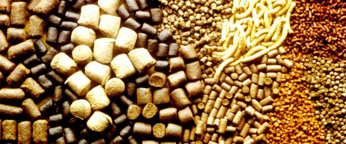 Зерно и зерносмеси